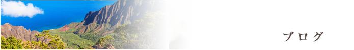 札幌のフラ教室「ハーラウ・オ・カレイイリマオカラニ」のブログ